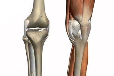 خشونة غضروف الركبة الأسباب والعلاج