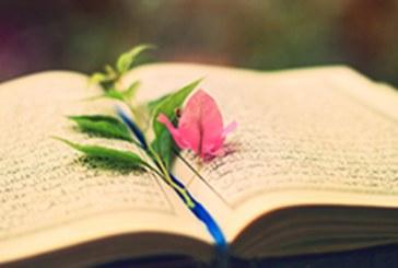 دروس وعبر  من القرآن الكريم