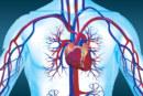 عملية ادراك القلب في القرآن الكريم