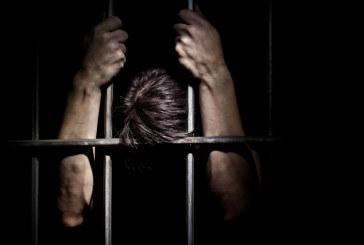 مجتمع الزيارات المليونية وإشكالية الجريمة