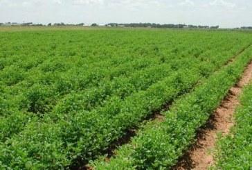 الإنتاج الزراعي في القرآن